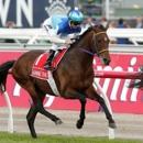 Melbourne Cup favorite died of acute heart failure (Reuters)